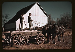 Southeastern Georgia?  (LOC) | by The Library of Congress