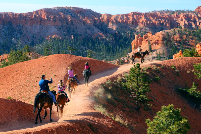 IMG_4540 Mule Ride, Bryce Canyon National Park