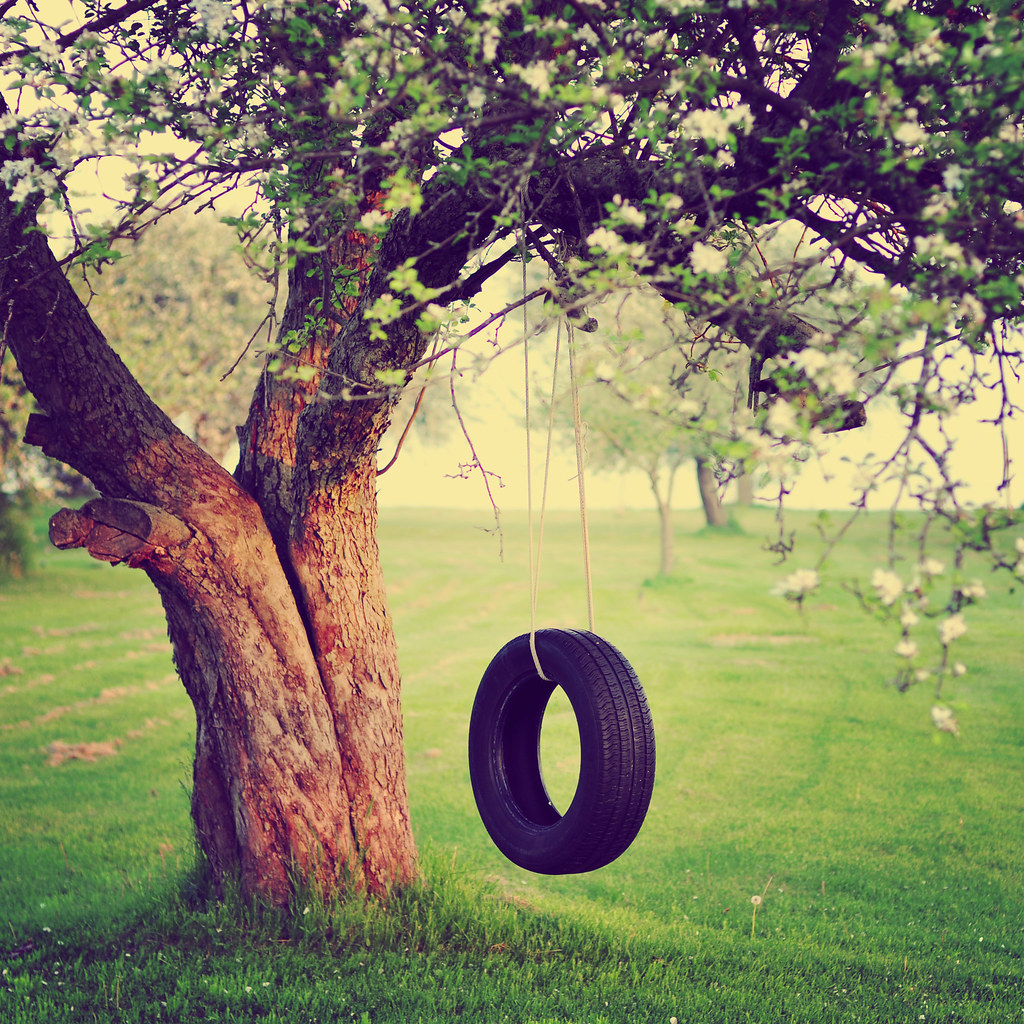 the old tire swing if you 39 ve grown up on a farm or in t