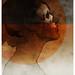 Beneath the skin: 24 x 36