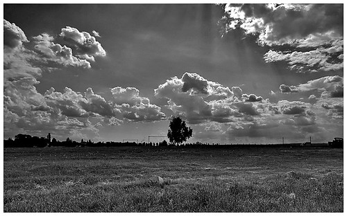 Velence hdr in b&w | by -Dorothea-