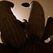 Cactus parasol