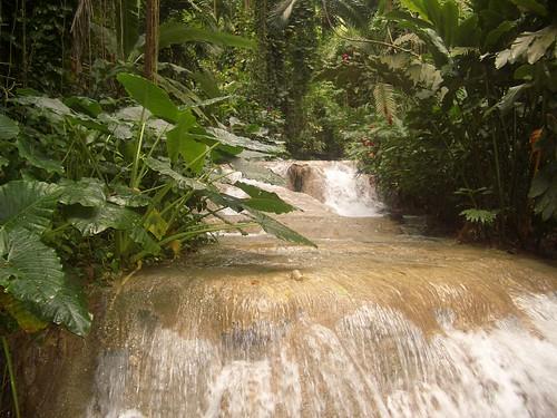 enchanted garden ocho rios jamaica annlori flickr