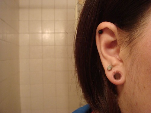 Comparing Tunnels 2g 0g 00g 716 12  Ear Stretching