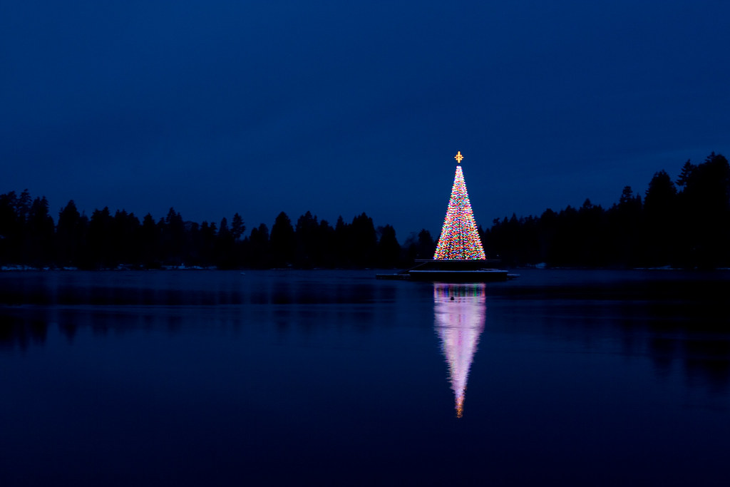 Christmas Tree Lake