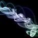 Smoke Braids 3