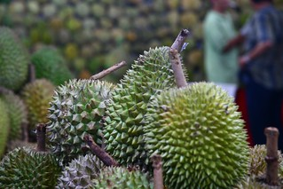 durians | by momovieman