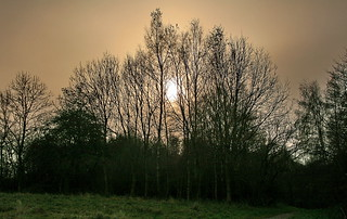 . . a Hazy Shade of Winter - IMG_2076a | by Alfs photodiary