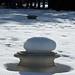 snow mushrooms in distance