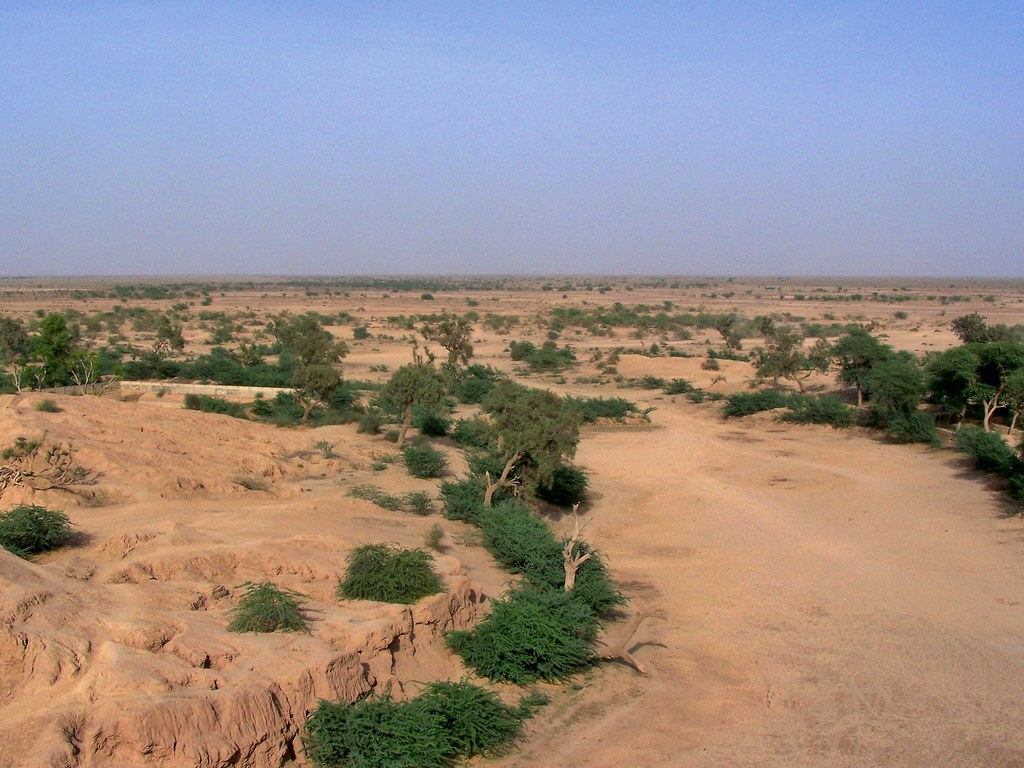 Cholistan Desert Punjab Pakistan March 2008