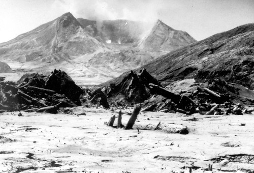 Black and white image shows Mount St. Helens, hollowed out and steaming, in the near distance. In the foreground, there are ridges stripped of vegetation, and piles of debris and logs scattered on the valley floor.