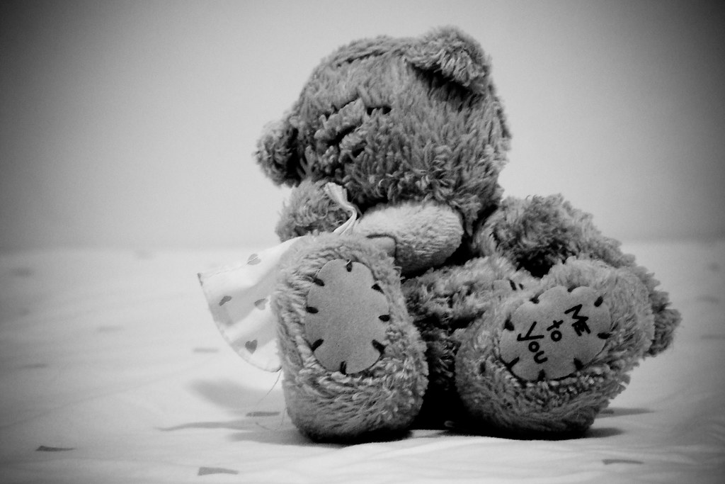 Image Result For Teddy Bear In