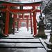 Winter / Japan / Kyoto / Snow / Shrine