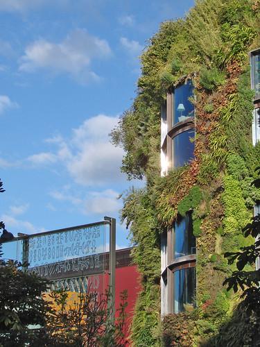 murs vegetal