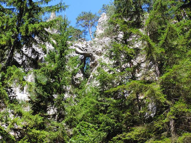 Great Fatra National Park, Slovakia