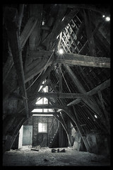 Convent the attic with very fragile spongy floors www for Floor zegwaard