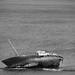 Shipwreck II BW