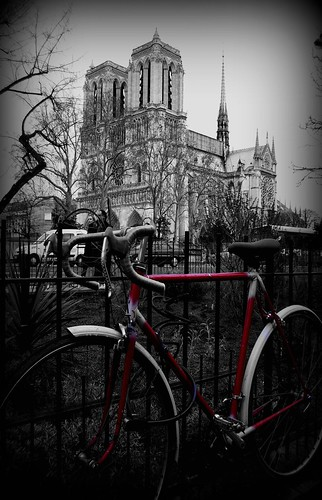 Notre Dame | by triz1989