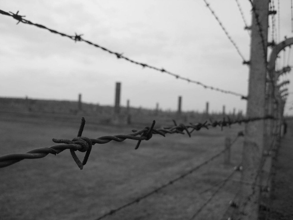 Barbed Wire, Death Camps, Auschwitz, Poland Black and Whit… | Flickr