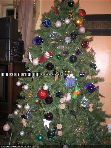 funny-pictures-christmas-tree-cat | by ♥Sapphire♥
