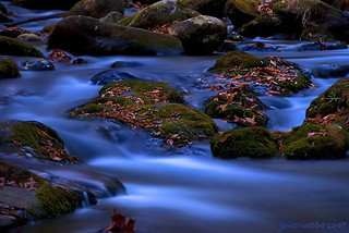 NC Stream at Night | by JamesWatkins