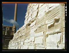 Southland Paper mill, Kraft (chemical) pulp used in making newsprint, Lufkin, Texas  (LOC) | by The Library of Congress
