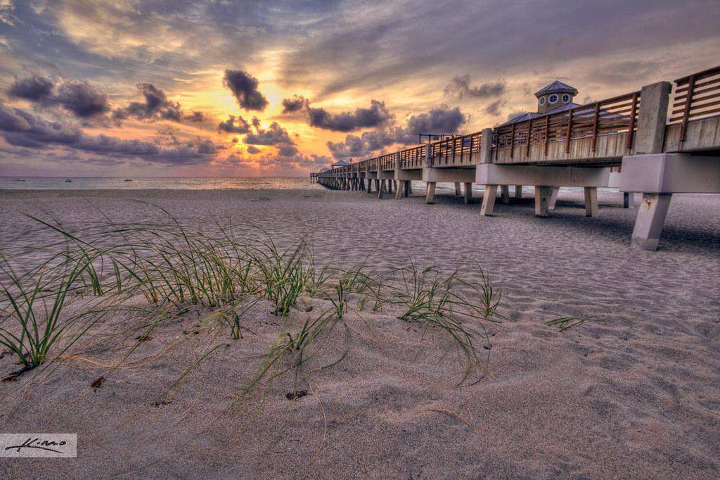 Juno beach sunrise fishing pier for Juno pier fishing report
