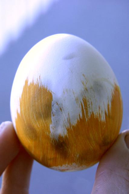 Egg Shell Paint Cc Std Color