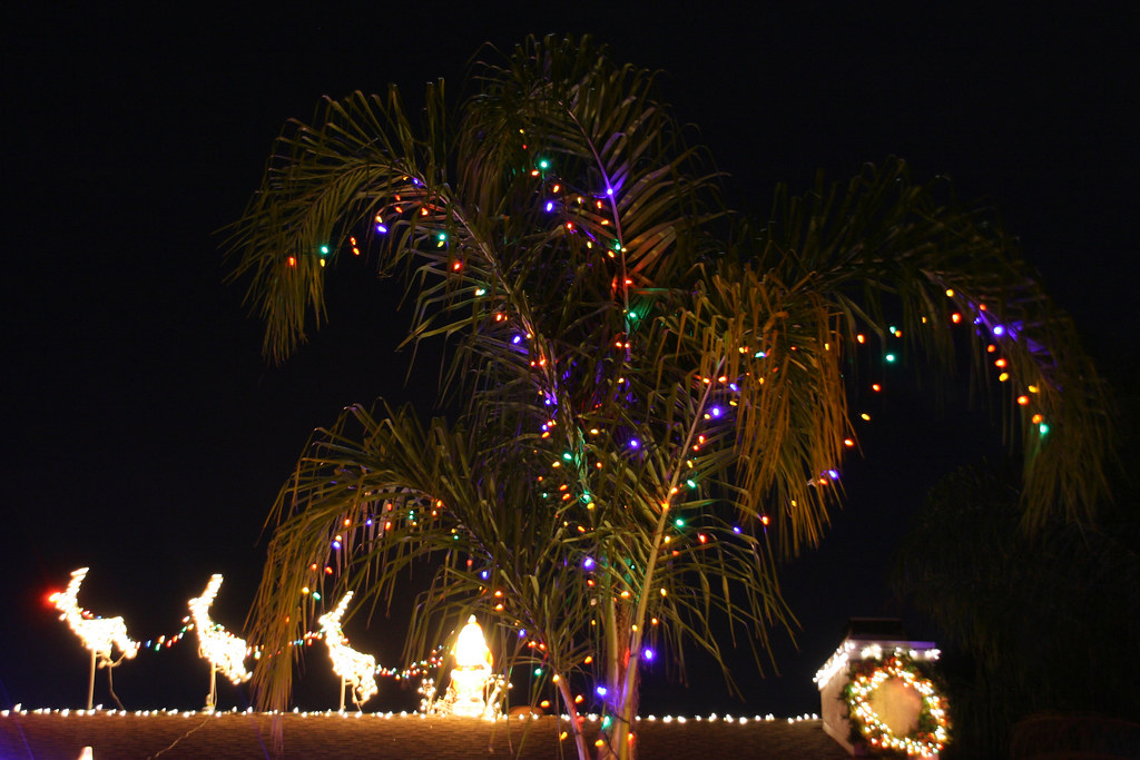christmas palm tree santa and reindeer by slworking2