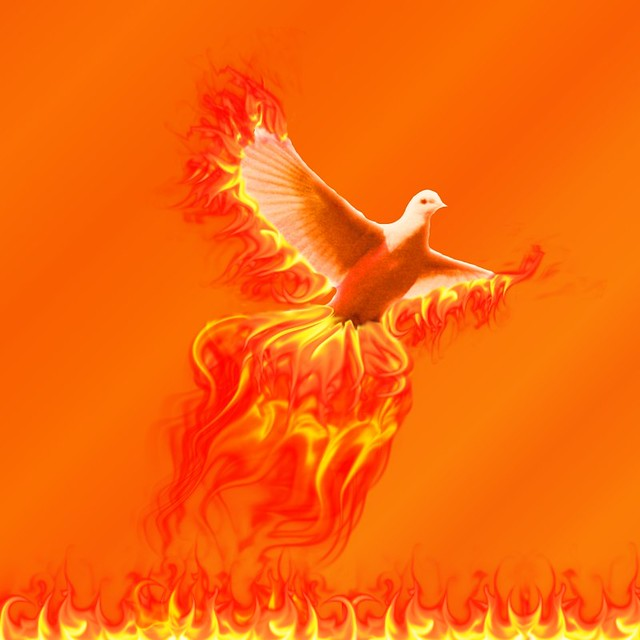 Image Result For Wings Of Fire