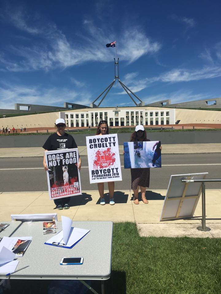 Canberra, Australia Korean Embassy Protest the horrific & cruel dog meat trade in South Korea! – February 9, 2017
