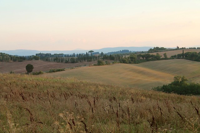 The hills of Tuscany in August