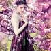 Garden Blush