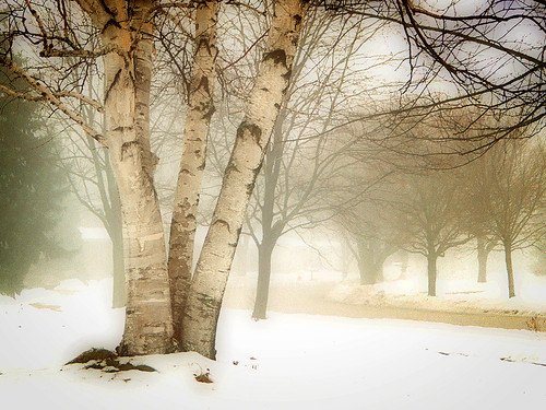 Foggy day in the neighborhood | by James Jordan
