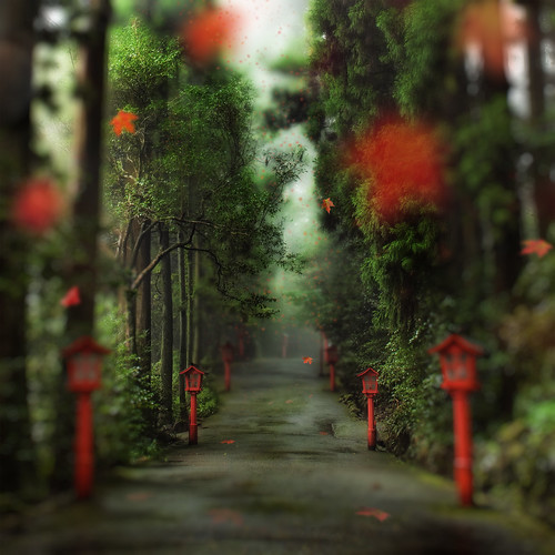 The Gentle Path to the Beyond | by Stuck in Customs