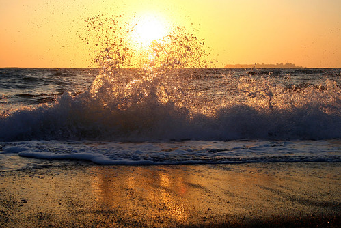 wave | by ester-**