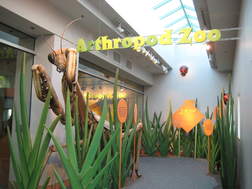 Foyer Museum Zoo : Arthropod zoo image shows the entryway to