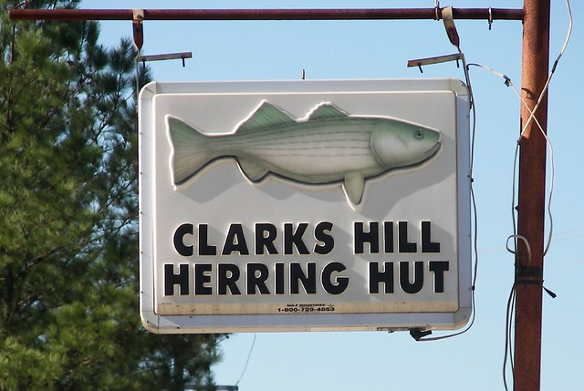 Clark 39 s hill lake at clark 39 s hill south carolina a fine for Clarks hill lake fishing report
