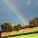 rainbow overload I