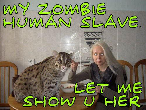 Zombie Slave 54