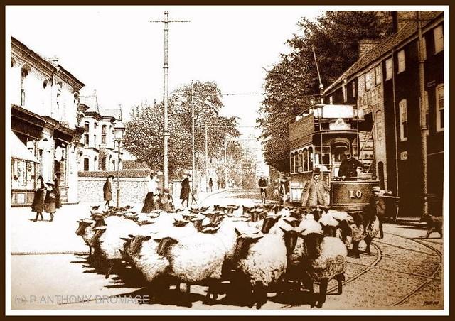 R T Pointer Norwich EARLHAM ROAD, NORWICH,...
