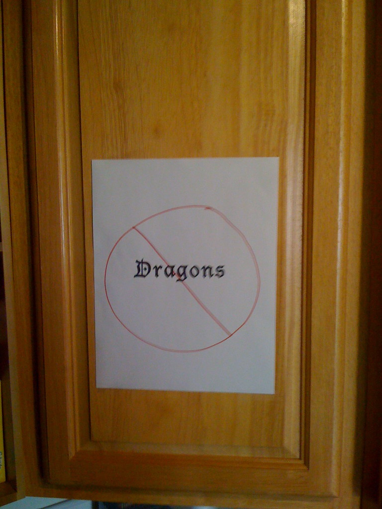 No Dragons Allowed Found This In The Kitchen On The