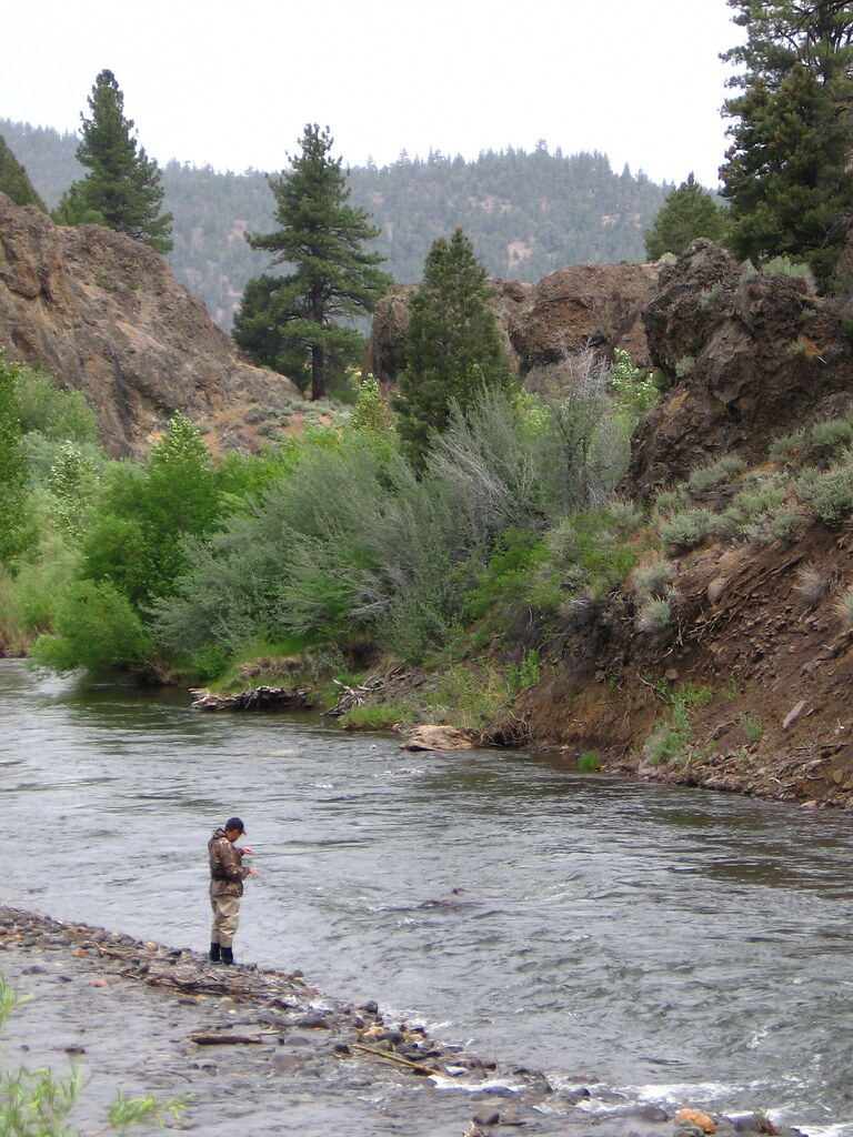 Fly Fishing in Carson River | John tried fishing in the ...