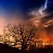 Phantom on a burning sky