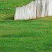 Grass with a wooden wall