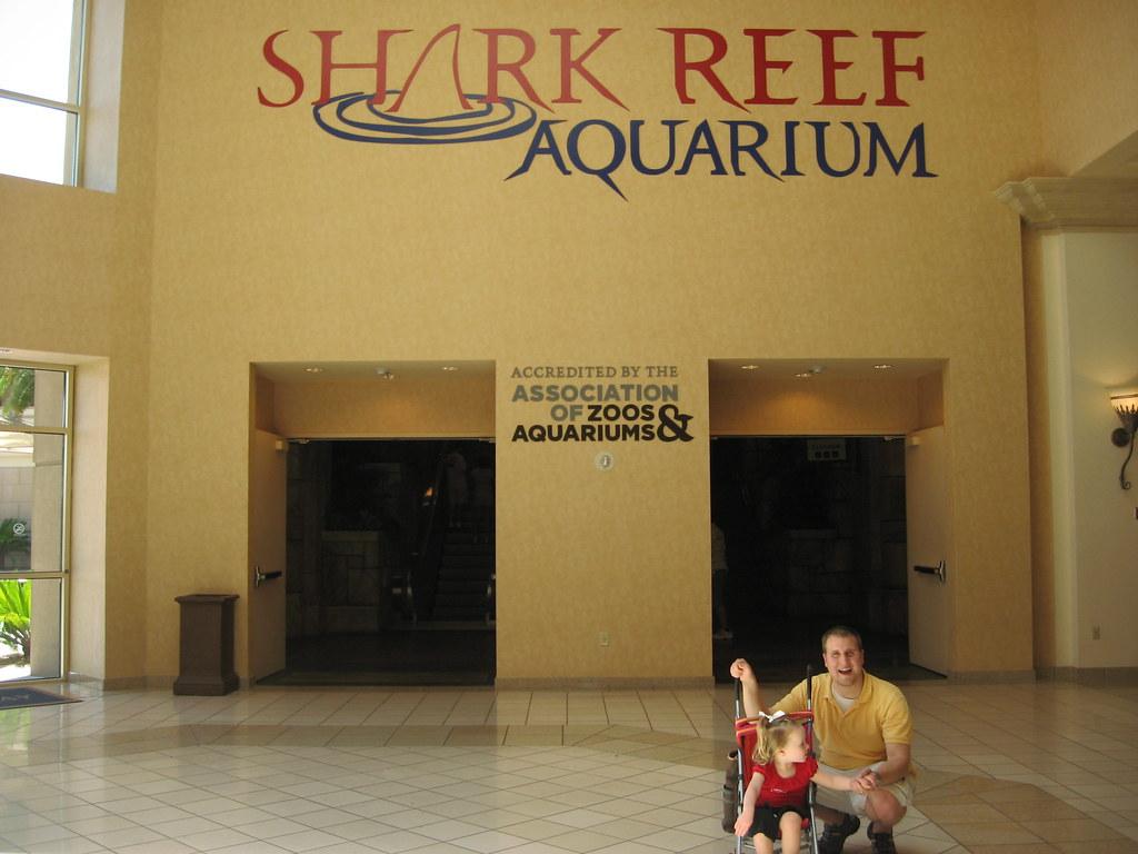 shark reef aquarium mandalay bay las vegas nevada flickr