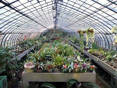 Jard n bot nico carlos thays botanical garden original for Amapola jardin de infantes palermo