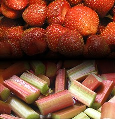 Strawberry-Rhubarb from a Home Kitchen Garden | by Daniel Gasteiger