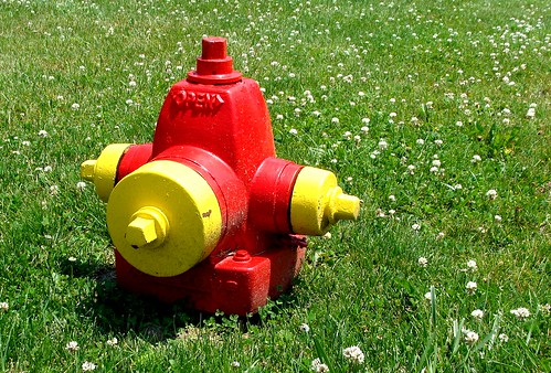 Fire hydrant, Coldwater, Michigan | by Martin LaBar (going on hiatus)