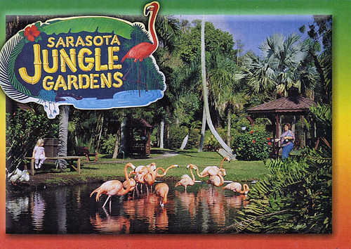 Sarasota Jungle Gardens 2 Karyn Schronski Flickr